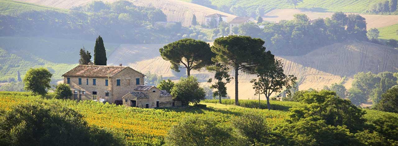 Tuscany Culinary Adventure - farmhouse